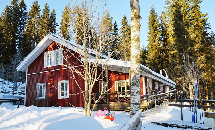 Finland holiday cottage ID-455